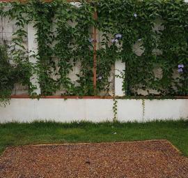 Jardín con el P330 negro